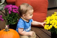 EmmettPumpkin-10