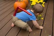 EmmettPumpkin-15
