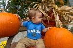 EmmettPumpkin-2