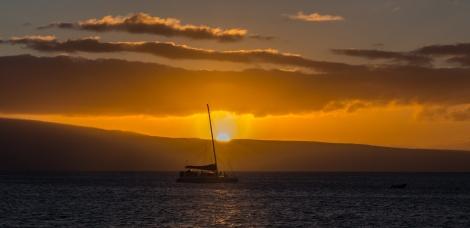 Maui landscape-22