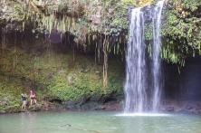 Maui landscape-23