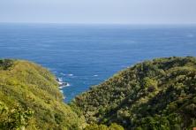Maui landscape-24