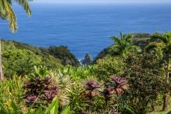 Maui landscape-27
