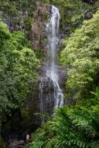 Maui landscape-33