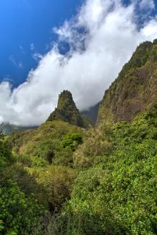Maui landscape-43