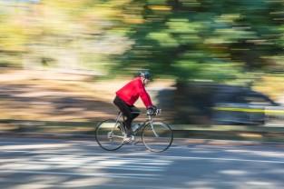 Central Park Rider