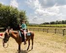 Howell FarmTrevor turns 4